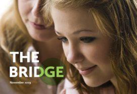 The Bridge front cover Parental Mental illness