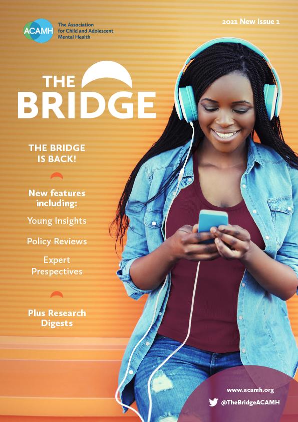 Bridge front cover